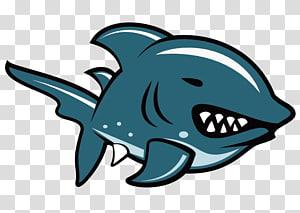 Shark Illustration, Shark PNG clipart