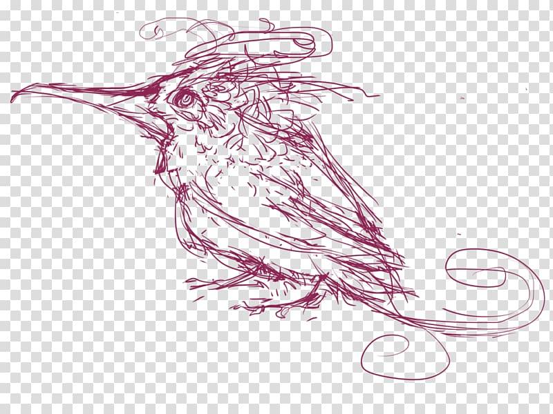 Beak Line art Invertebrate Sketch, hummingbird sketch PNG