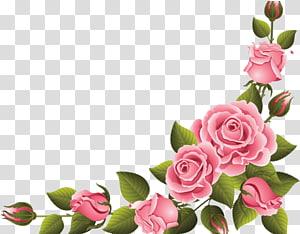 corner flower decoration PNG clipart