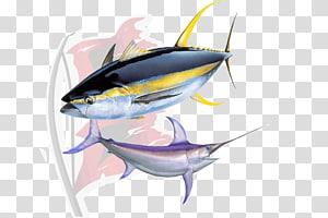 Yellowfin tuna Sushi Atlantic bluefin tuna, tuna PNG clipart