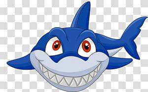 blue shark graphics illustration, Shark Cartoon , Blue sharks stay Meng PNG clipart