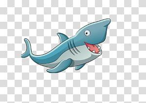 Shark Illustration, Cartoon shark PNG clipart
