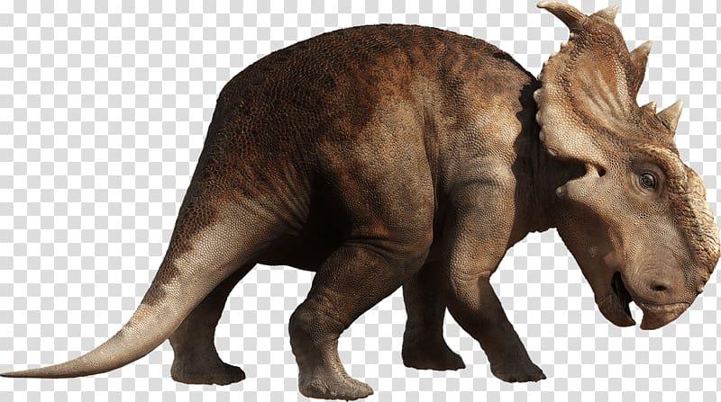 brown dinosaur graphic, Dinosaur Walking PNG