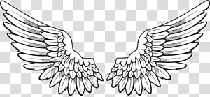 Icon Wing , Wings , pair of feather wings artwork PNG