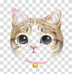 Cat Dog Colored pencil Painting Cuteness, Cartoon cat PNG