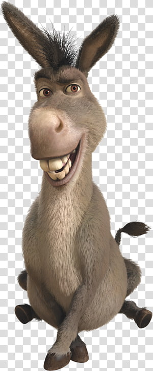 Shrek Donkey illustration, Donkey Princess Fiona Shrek The Musical Lord Farquaad, shrek PNG