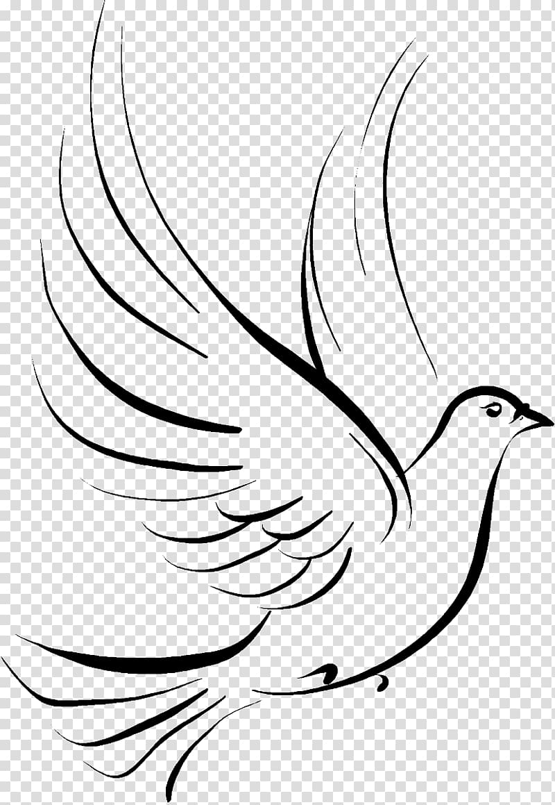 black bird illustration, Columbidae Doves as symbols Drawing , funeral PNG