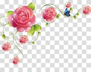 rose rattan PNG clipart