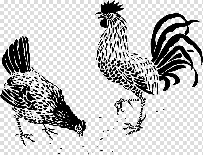 Plymouth Rock chicken German Langshan Drawing Rooster Hen, painting PNG