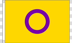 Intersex flag Pride parade Gay pride Rainbow flag, Flag PNG