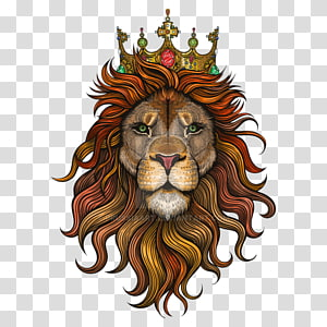 lion head with crown illustration, Lion Drawing Art, lion PNG