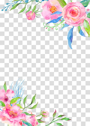 hand painted flower borders PNG clipart