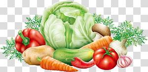 vegetables illustration, Cabbage Vegetable Potato , vegetables PNG
