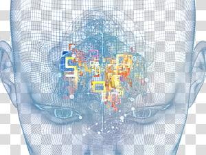 blue brain model PNG