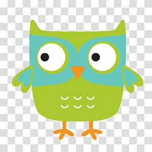 Owl , owls PNG clipart