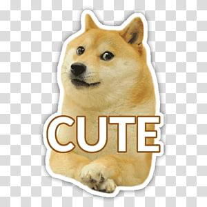 Shiba Inu Dogecoin, Save The Doge PNG