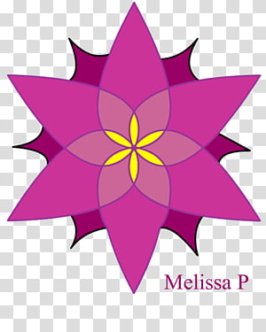 Rotational symmetry Reflection symmetry , flower geometry PNG clipart