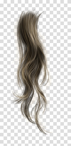 brown hair extension , Brown hair Wig Long hair, pegasus hair PNG clipart
