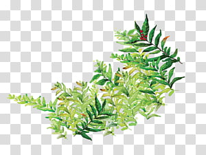 green leaves illustration, Leaf Cartoon Comics, Cartoon painted green leaves PNG
