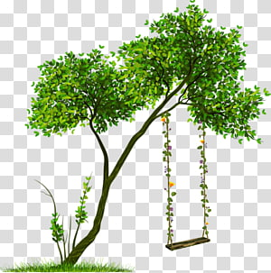 Tree Transparency Portable Network Graphics Shrub, tree PNG clipart