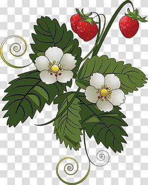Strawberry pie Fruit , Flower vine PNG clipart