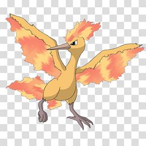 Pokémon X and Y Moltres Zapdos Entei, Moltres PNG