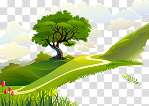 green tree on mountain, Morning Quotation , Forest PNG clipart