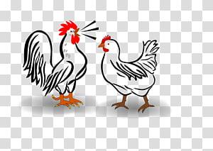 Houdan chicken Leghorn chicken Cochin chicken Croad Langshan Hamburg chicken, Chickens PNG