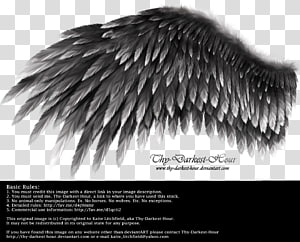 Wing YouTube White, wings angel PNG