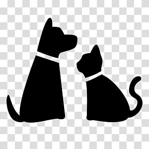 Pet sitting Dog walking Cat, black cat PNG clipart