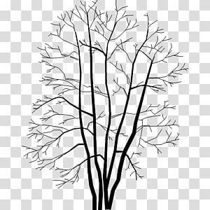 Twig .dwg AutoCAD DXF Drawing, tree PNG clipart
