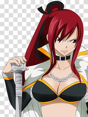 Erza Scarlet Gray Fullbuster Natsu Dragneel Juvia Lockser Fairy Tail, fairy tail PNG