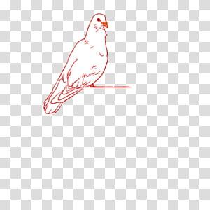 Google s Illustration, pigeon PNG