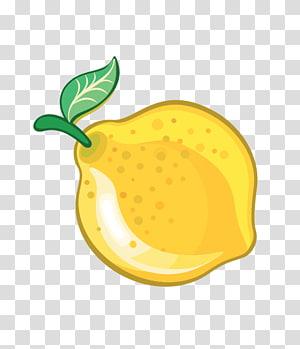 Fruit European pear, pear PNG clipart