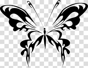Butterfly Line art , Fairy Silhouette PNG