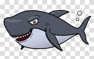 Fish Aquatic animal , shark PNG clipart