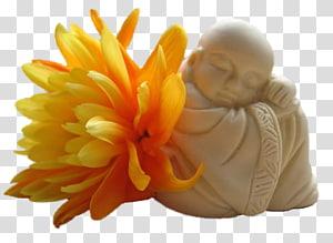 Buddhism Buddhahood Meditation Zen Dharma, buddhas enlightenment PNG
