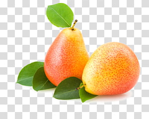 Pear Fruit Icon, Pear fruit PNG