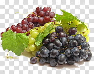 Wine Common Grape Vine Fruit, wine PNG clipart