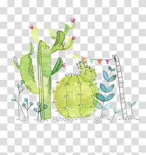 green cactus illustration, Cactaceae Watercolor painting Paper Succulent plant Illustration, Watercolor cactus PNG clipart