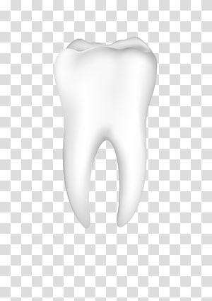 person tooth, Tooth Nose Jaw Mouth Ear, tooth PNG