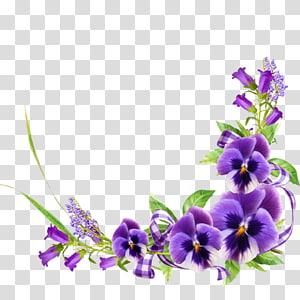 Violet Floral design Flower, violet PNG