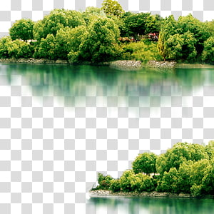 body of water besides green tree island illustration, Landscape Icon, Lake scenery PNG clipart