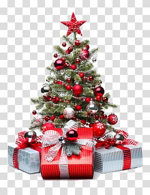 Christmas tree Christmas decoration Christmas ornament, Red Christmas tree PNG