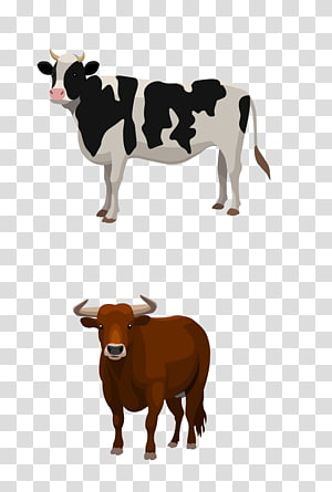 cow and buffalo , Sheep Cattle Live Farm, Dairy cow PNG