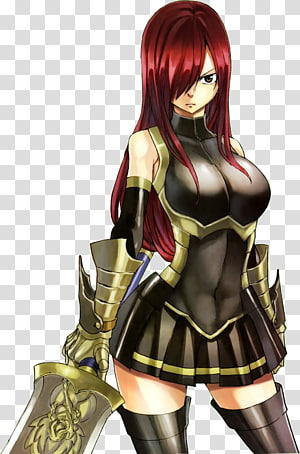 Erza Scarlet Lucy Heartfilia Natsu Dragneel Gray Fullbuster Wendy Marvell, Anime PNG clipart