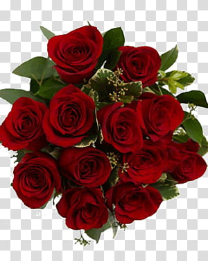 Flower bouquet Rose Cut flowers Valentine\'s Day, NOROZ PNG clipart