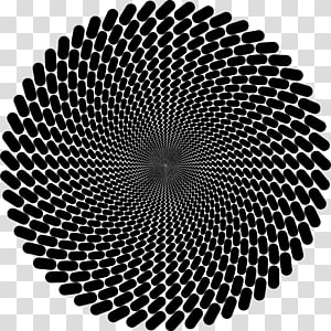 Fraser spiral illusion Circle Rotation Concentric objects, circle PNG clipart