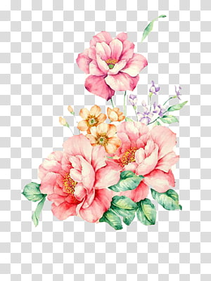 floral watercolor PNG