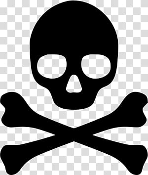 Skull and crossbones graphics Drawing , skull PNG